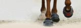 FLOATING BOOTS 2014 - AANBIEDING_