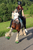CAVALLO TREK GREEN_